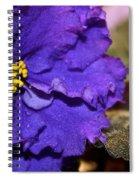 Monster Violet Spiral Notebook