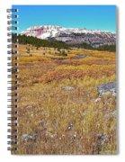 Montana100 0885  Spiral Notebook