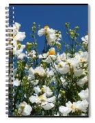 Monterey Beauty Spiral Notebook