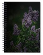 Mood Lilac Spiral Notebook