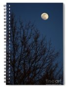 Moon And Trees Spiral Notebook