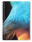 Moon Dance Spiral Notebook