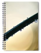 Moon Drops Spiral Notebook
