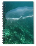 Moon Jelly Fringe Spiral Notebook