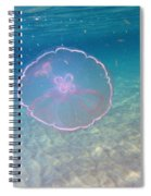 Moon Jelly Spiral Notebook