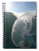 Moon Jelly Rise Spiral Notebook