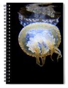 Moon Lit Jelly Spiral Notebook