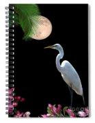 Moon Over Florida Spiral Notebook