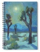Moon Shadows At Joshua Spiral Notebook