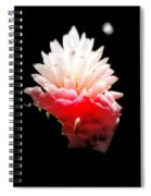 Moonlight Glow Spiral Notebook