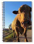Mooo-ve Over Spiral Notebook