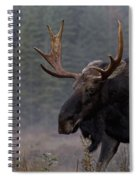 Moose, Algonquin Provincial Park Spiral Notebook