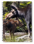 Moose Brunch Spiral Notebook