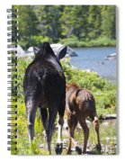 Moose Ends Baxter State Park Maine Spiral Notebook
