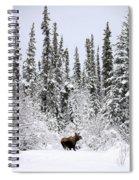 Moose In Deep Snow, Near Teslin, Yukon Spiral Notebook