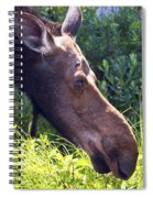 Moose Profile Spiral Notebook