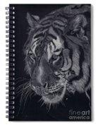 Moquito El Tigre Spiral Notebook