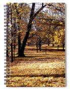 More Fall Trees Spiral Notebook