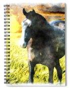 Morisco At Sunset Spiral Notebook
