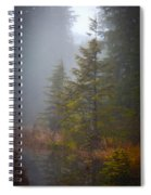 Morning Fall Colors Spiral Notebook