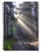 Morning Forest In Fog Spiral Notebook