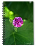 Morning Glory Puckered Up Spiral Notebook