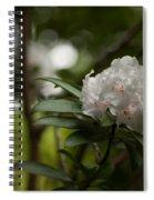 Morning Grace Spiral Notebook