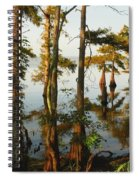 Morning In The Swamps Spiral Notebook
