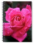Morning Moisture Spiral Notebook
