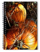 Morning Pumpkins Spiral Notebook