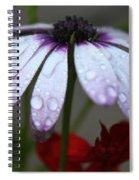 Morning Rain Spiral Notebook