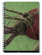Mosquitos Head, Sem Spiral Notebook
