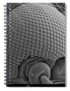 Mosquitos Head Spiral Notebook