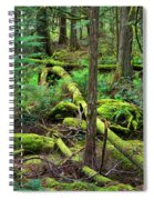 Moss And Fallen Trees In The Rainforest Of The Pacific Northwest Spiral Notebook