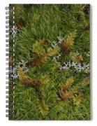 Moss And Lichen Spiral Notebook