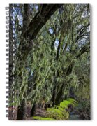 Moss Covered Trees Spiral Notebook