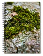 Moss In The Middle Spiral Notebook