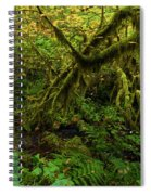 Moss In The Rainforest Spiral Notebook