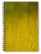 Moss In Yellow Spiral Notebook