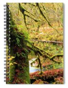 Mossy Bend Spiral Notebook