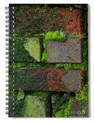 Mossy Brick Wall Spiral Notebook