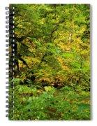 Mossy Rainforest Spiral Notebook