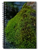 Mossy River Rock Spiral Notebook