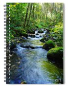 Mossy Rocks And Water   Spiral Notebook
