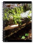 Mossy Waterfall On Mushroom Rock Spiral Notebook