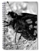 Moth One Spiral Notebook