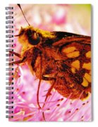 Moth Two Spiral Notebook