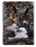 Mother And Baby Owl Spiral Notebook