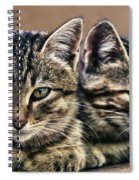 Mother And Child Wild Cats Spiral Notebook