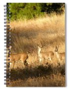 Mother And Twins Spiral Notebook